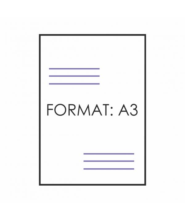 Plakat A3 - Strona główna